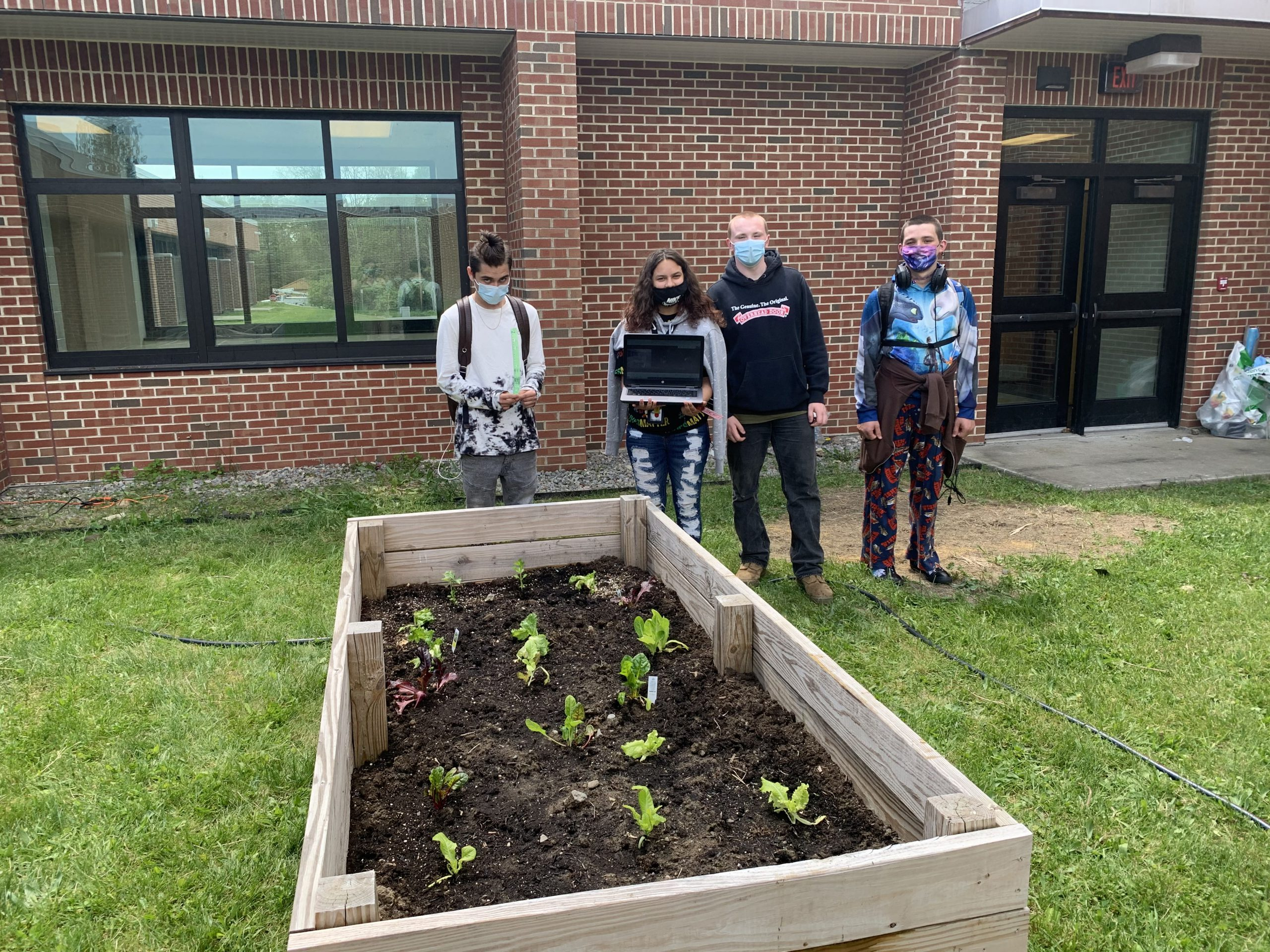 four students stand over their lettuce garden
